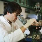 Теперь рак предсказуем! Ученым удалось создать модель поведения раковых опухолей