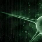 Правительственные супервирусы