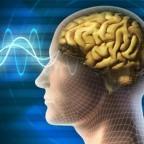 Имплантат для мозга: вспомнить все